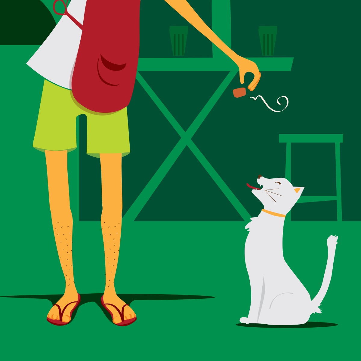 ilustra-gato